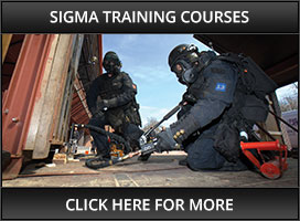 Sigma Training Courses